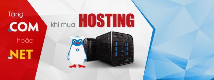 combo-hosting-domain