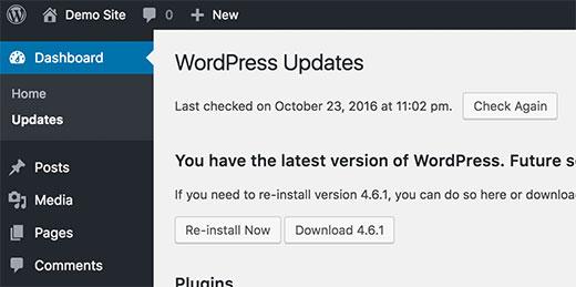 wordpressupdates