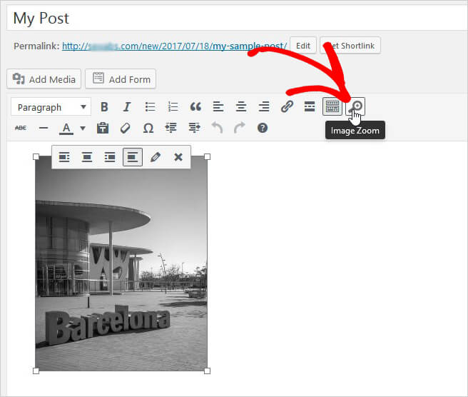 add-zoom-post-page-images