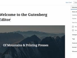 gutenberg-editor-1024x513