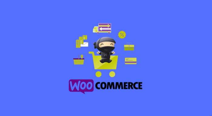 Best-WooCommerce-Plugin-700x383