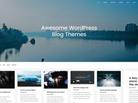 wordpress-blog-themes-1